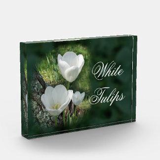 白いチューリップの花のトリオ 表彰盾