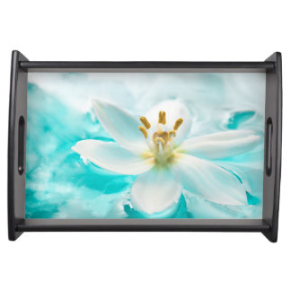 白いチューリップの花の青海原の池の水のターコイズ トレー