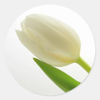 白いチューリップ ラウンドシール