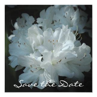 白いツツジの保存日付カード カード