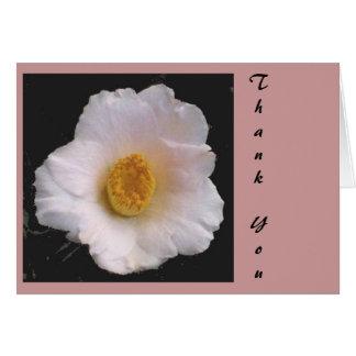 白いツバキ2a、ありがとう カード