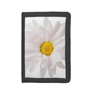 白いデイジーによってはデイジーの花の花柄のテンプレートが開花します