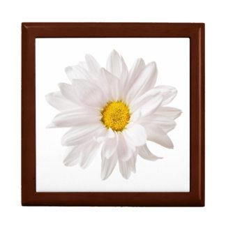 白いデイジーの花のデザインの花のデイジーのテンプレート ギフトボックス