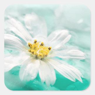 白いデイジーの花の青海原の池の水のターコイズ スクエアシール