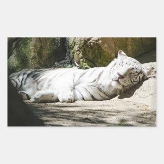 白いトラのステッカー 長方形シール