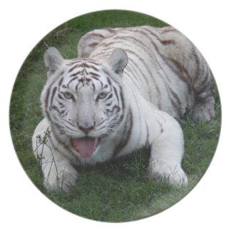 白いトラ1 9x9 プレート