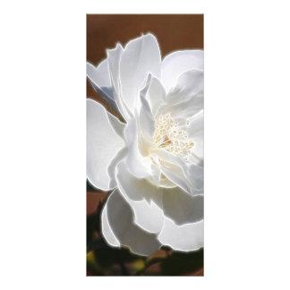 白いバラおよび意味 ラックカード