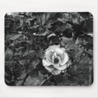 白いバラのコレクション マウスパッド