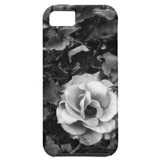 白いバラのコレクション iPhone SE/5/5s ケース