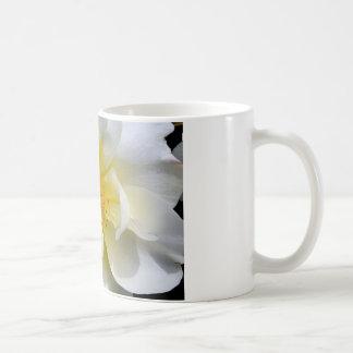 白いバラの中心 コーヒーマグカップ