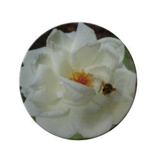 白いバラの装飾的なプレート 磁器プレート