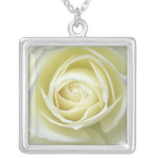 白いバラの詳細の上で閉めて下さい シルバープレートネックレス