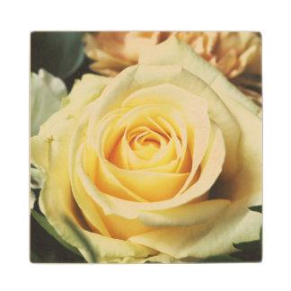 白いバラ ウッドコースター