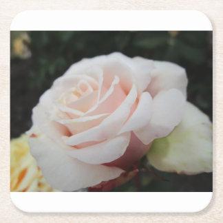 白いバラ スクエアペーパーコースター