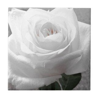 白いバラ タイル