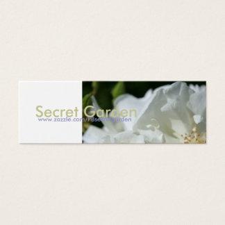 白いバラ(1)の花の写真 スキニー名刺