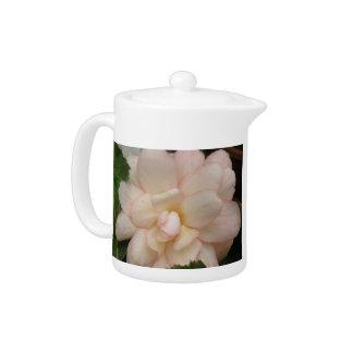 白いベゴニアの花のティーポット