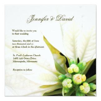 白いポインセチアの結婚式招待状 カード