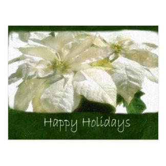 白いポインセチア2 -幸せな休日 ポストカード