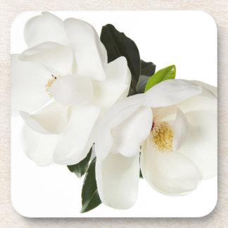 白いマグノリアの花のマグノリアの花柄の花 コースター
