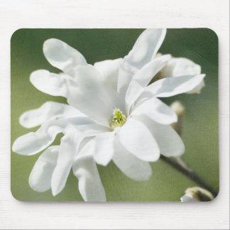 白いマグノリアの花 マウスパッド