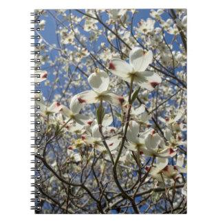 白いミズキ木によってはノートが開花します ノートブック