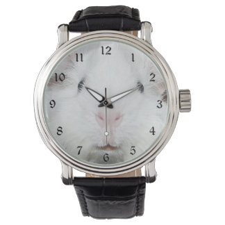 白いモルモットの顔 腕時計
