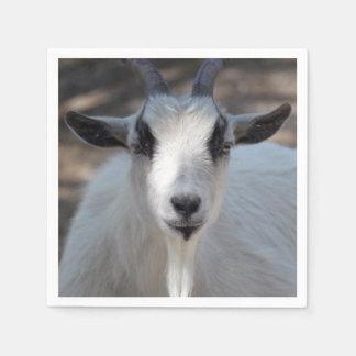 白いヤギ スタンダードカクテルナプキン
