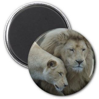 白いライオン マグネット