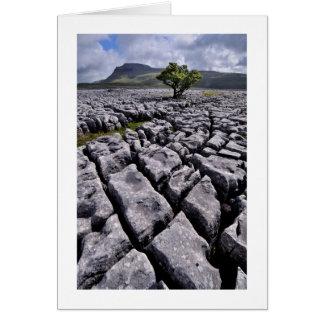 白い傷、ヨークシャの谷からのIngleborough カード