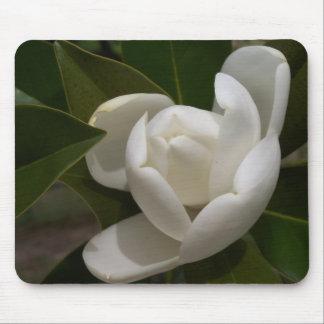 白い南マグノリアのつぼみ マウスパッド
