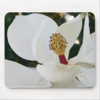 白い南マグノリアの花のギフトの花の終わり マウスパッド