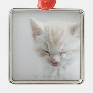 白い子ネコの睡眠 メタルオーナメント