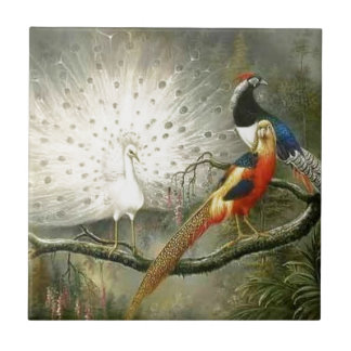 白い孔雀 タイル