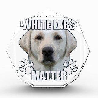 白い実験室の問題 表彰盾