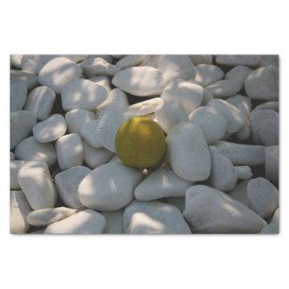 白い小石およびレモンティッシュペーパー 薄葉紙