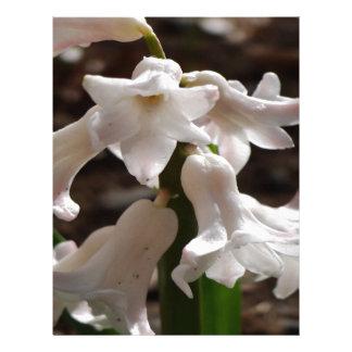 白い庭の花 レターヘッド