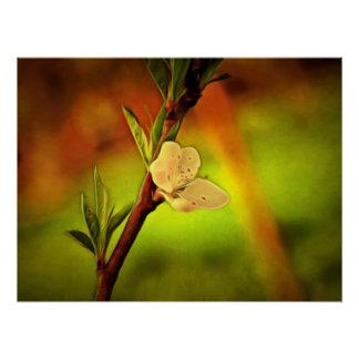 白い木の花の絵画 ポスター