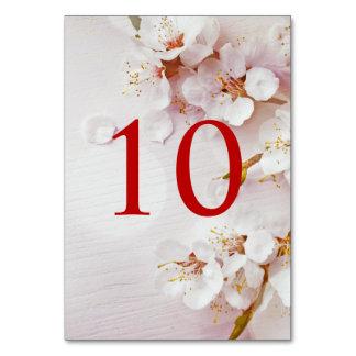 白い桜のエレガントなテーブル数 カード