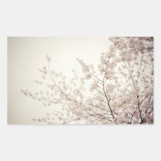 白い桜-セントラル・パークの春 長方形シール