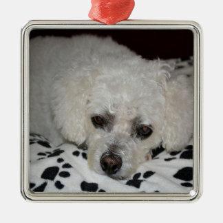 白い犬の優れた正方形のオーナメント メタルオーナメント