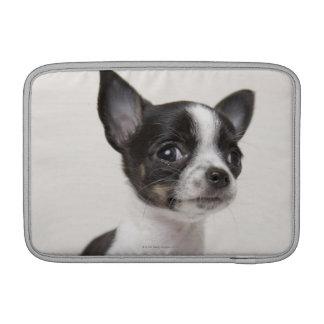 白い生地に立っているChihuhuaの子犬 MacBook スリーブ