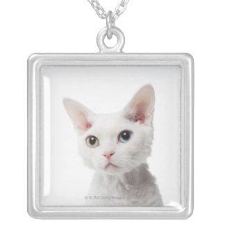 白い異様目の猫2 シルバープレートネックレス