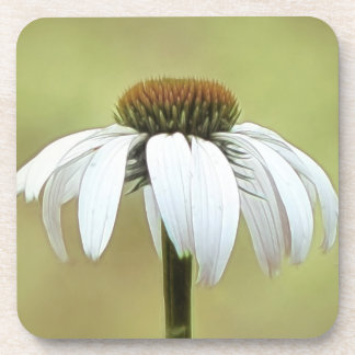白い白鳥のEchinacea コースター