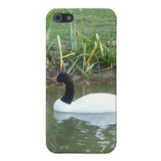 白い白鳥 iPhone 5 CASE