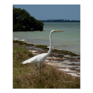 白い白鷺2ポスター ポスター