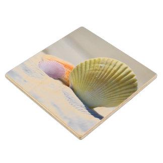白い砂の貝殻 ウッドコースター