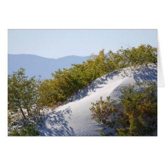 白い砂丘の国有記念物 カード
