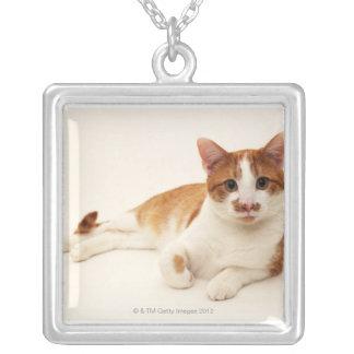 白い背景の猫 シルバープレートネックレス