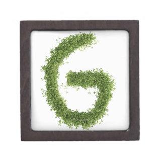白い背景のcressの「G」に文字を入れて下さい、 ギフトボックス